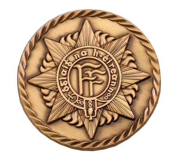 DEFENCE FORCES IRELAND COIN BACK