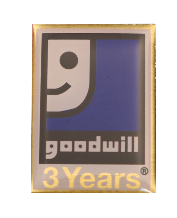 GOODWILL PIN