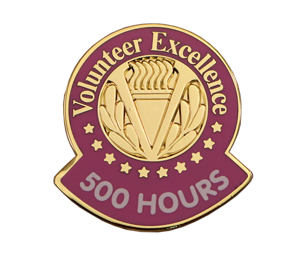 VOLUNTEER EXCELLENCE PIN